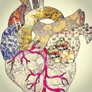 yoga, heart